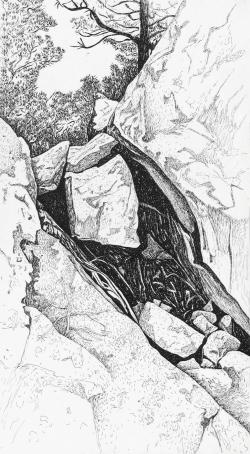 Rock Crevice