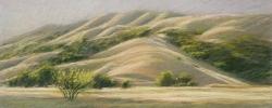 San Geronimo Valley Near Flanders Ranch