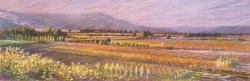 Sonoma Mountain Twilight