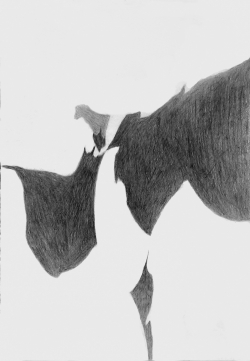 Morning Drawing 1971-2