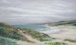 Dunes at Pescadero, Fog