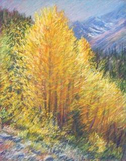 Flaming Aspens, Bishop Canyon