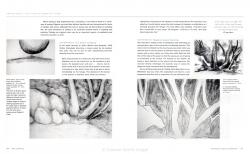 spirit-of-drawing-136-137